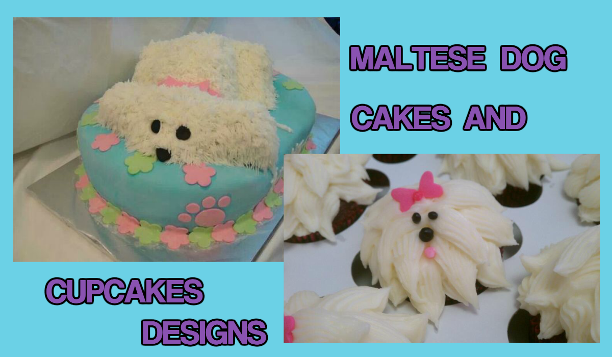 Maltese Dog Cakes and Cupcakes Designs
