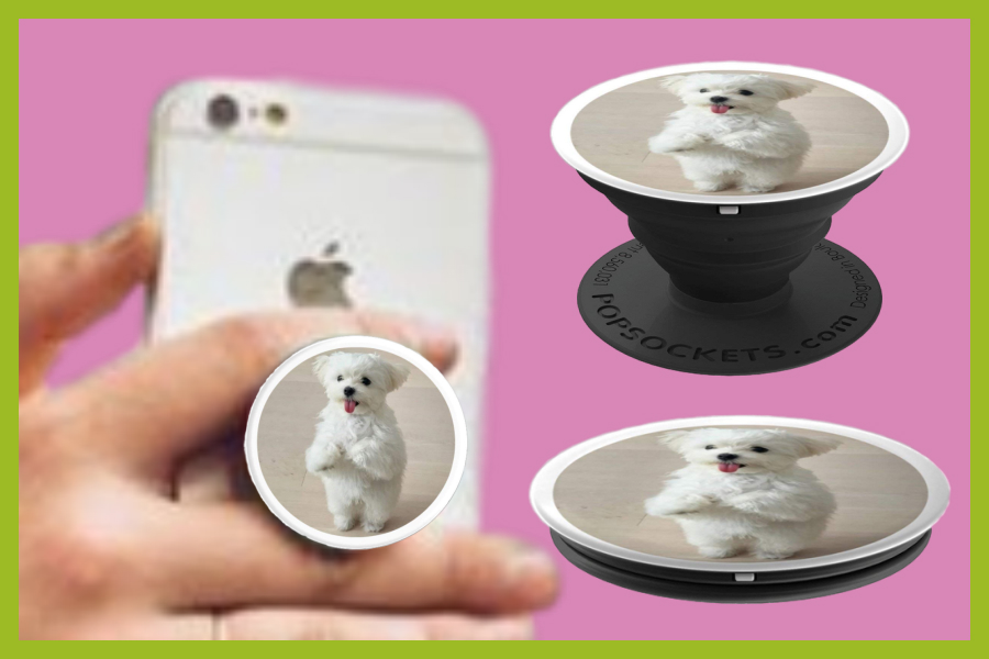 What Is Maltese Dog Popsocket Grip And Why You Need One For Your Phone